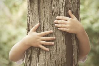 Dětské ruce objímající strom. Silné pouto k přírodě.