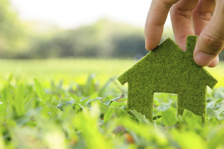 Zelený domeček na zelené louce